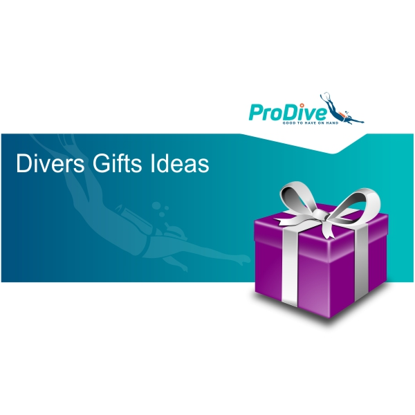 Divers Gifts Ideas (38)